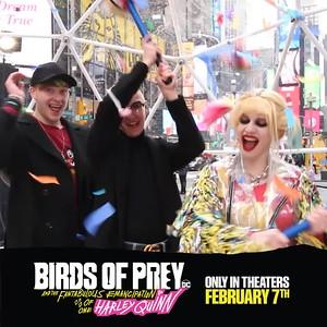 Birds of Prey - New York, NY