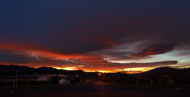 Another spectacular sunrise looking down our street.              Photo By Steven Sharp (www.stevensharp.photos)