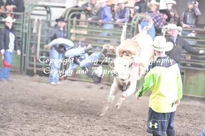 STEER SADDLE BRONC 4-21-2018