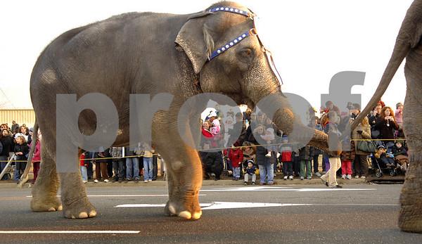 2008-03-11 Elephant Walk, Garden City