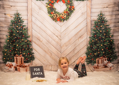 Anaya Christmas pictures (12-5-2020)