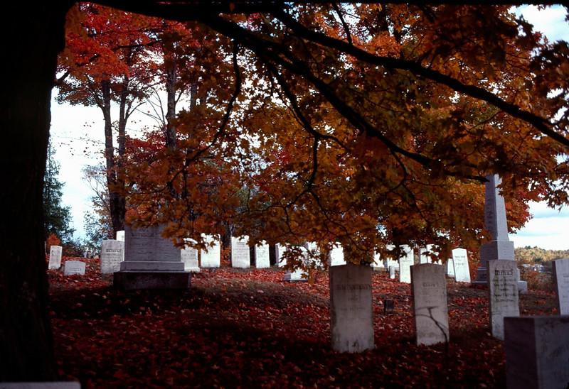1978 09 gravestones.jpg