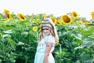 Abby | 2019 Sunflower Mini