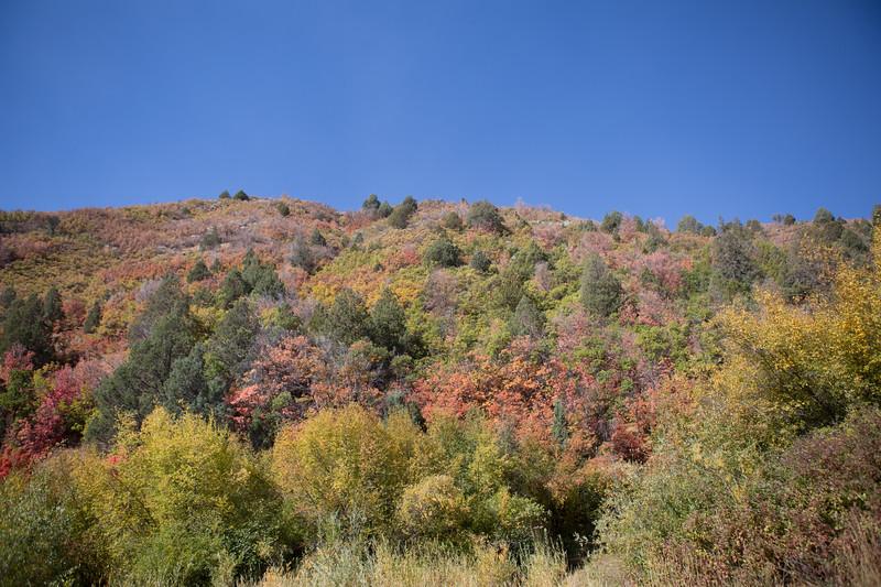 Utah Day 3-6.jpg