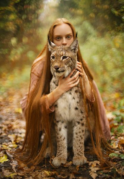 Meet the Lynx Prints