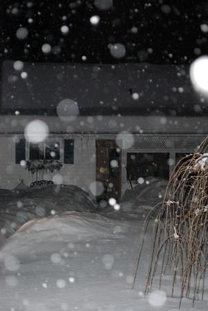 Winter Orbs 2014