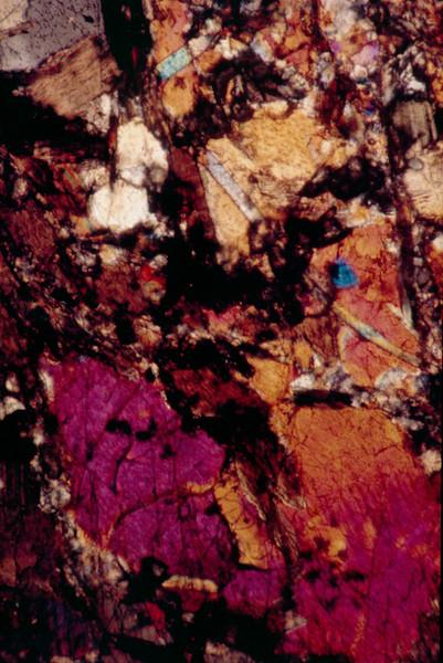 1972 01 Olivene slides 5.jpg