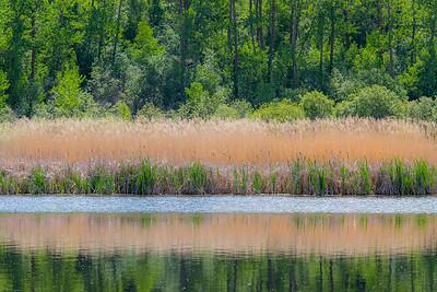 Vermilion Provincial Park