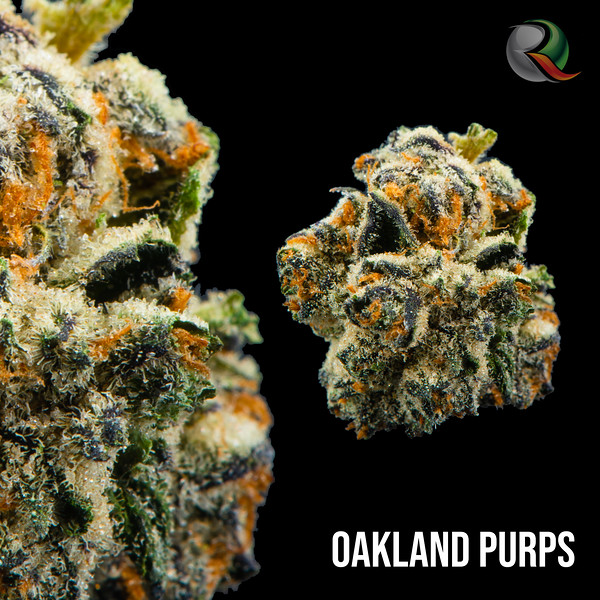 oakland purps.jpg