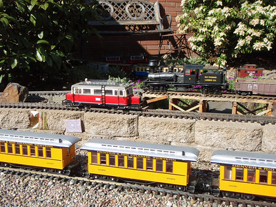 Garden Railroad 2009