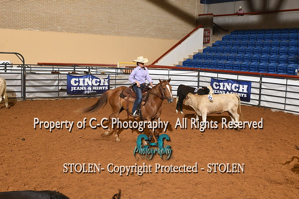 121-173 Pen 3 RSNC Finals 2018 Fort Worth TX
