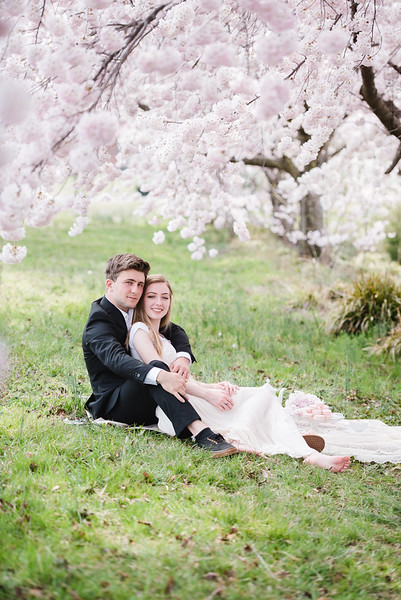 Cherry Blossoms (120 of 182).jpg