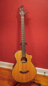 Breedlove Bass