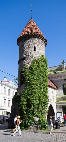 Tallinn-15.jpg