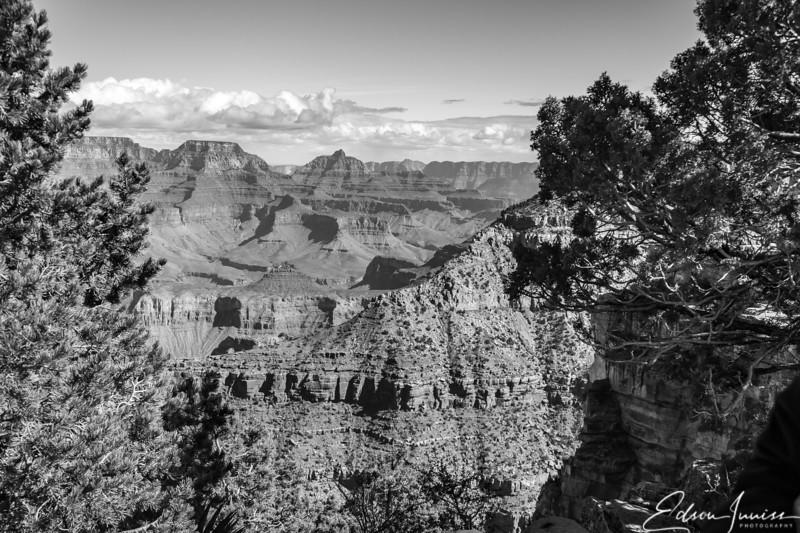 Grand Canyon National Park #3