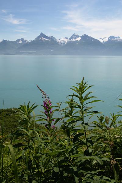 View over Port Valdez
