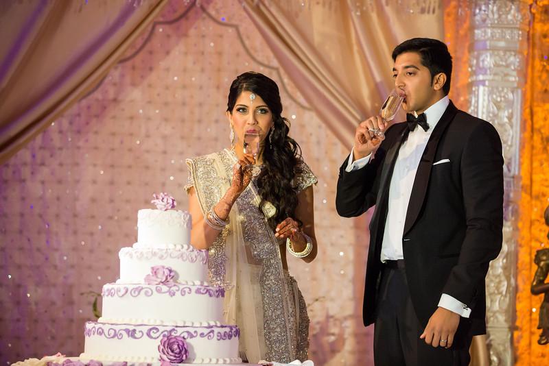 Nisha_Rishi_Wedding-1411.jpg