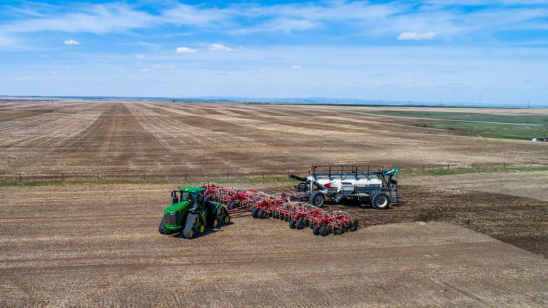barley 21.jpg