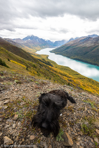 2016.09_Alaska-6103912.jpg