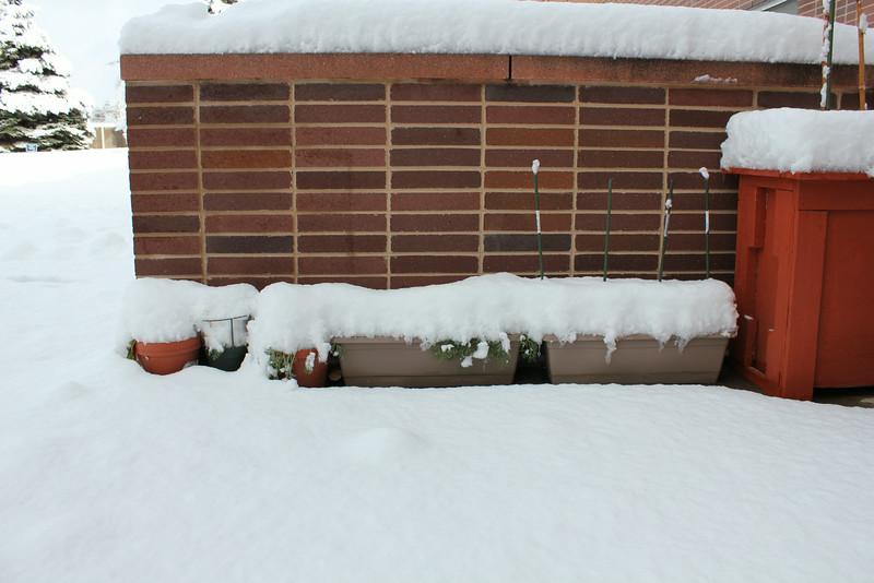 Snowy_Morning_11_10_2012_3304.JPG