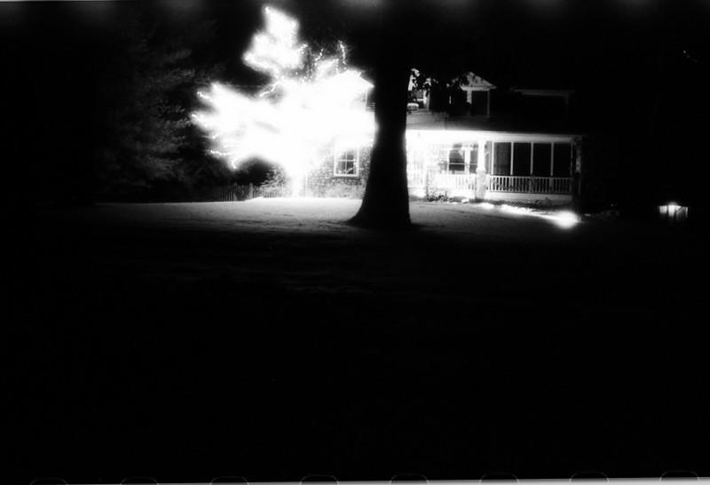 Tree of Lightning.jpg