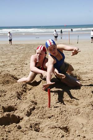 Beach Flags - Em Cameron PSE 060108