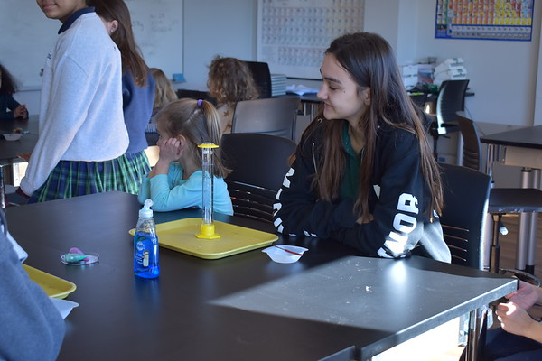 Ginkgo and Upper School Chemistry