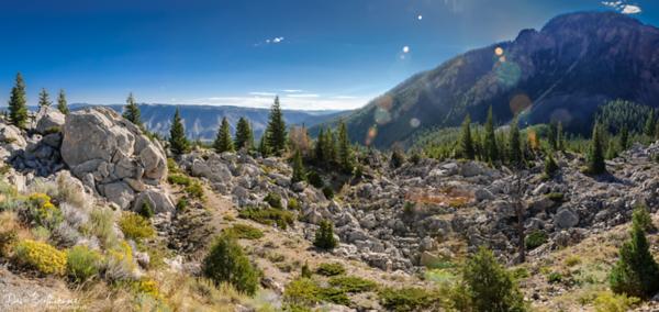 2011 Aug - Yellowstone Trip Day 8