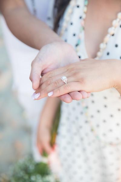 Lorenz + Elizabeth Proposal