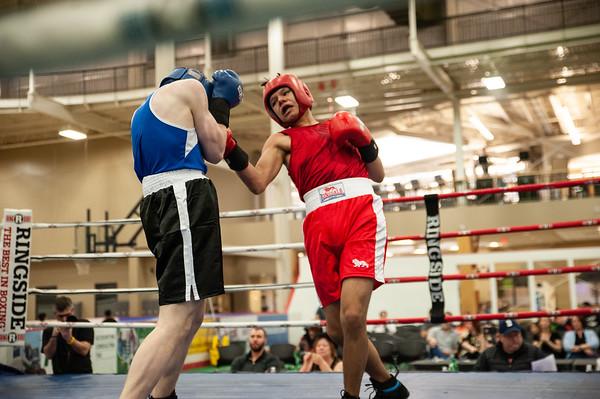 2019 Alberta Provincial Boxing Championships