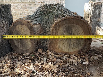 Post Oak for Furniture