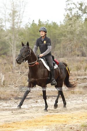 Etoniah Winter Gallop