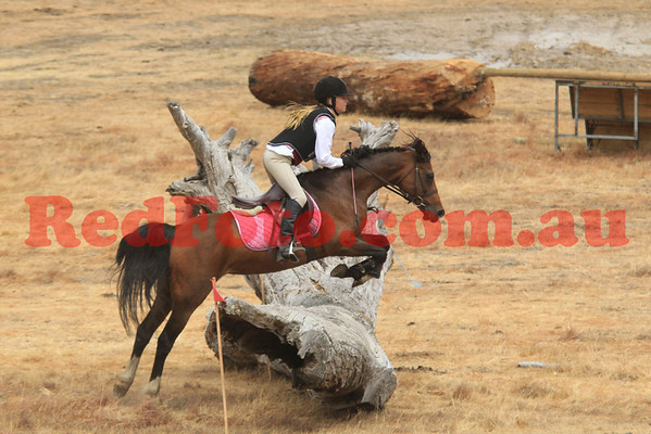 Zia Park Holiday Eventing Camp ODE
