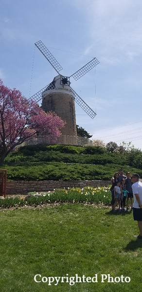 19 Spring -Wemego Tulip Festival