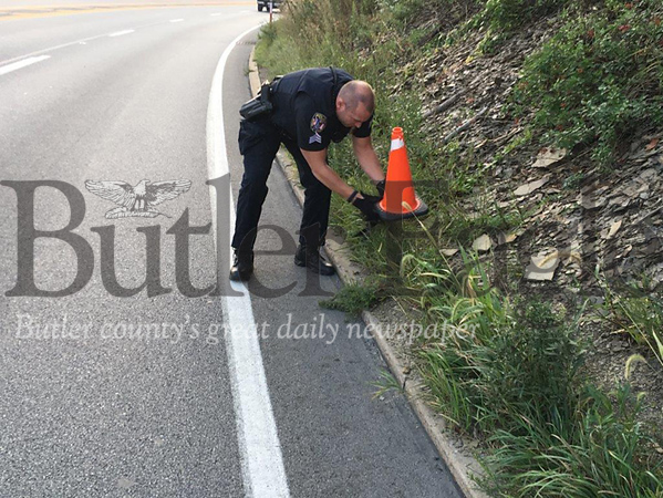 Butler Township Police Sgt. Jim Sasse rescues an injured goose along Route 8 south near the Greater Butler Mart. 2 col.