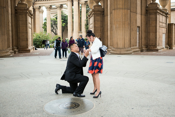 Patrick and Jessica Proposal