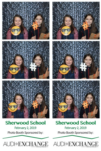"Sherwood School ""Carnival 2019"""