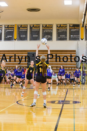 Hutch Volleyball vs GSL