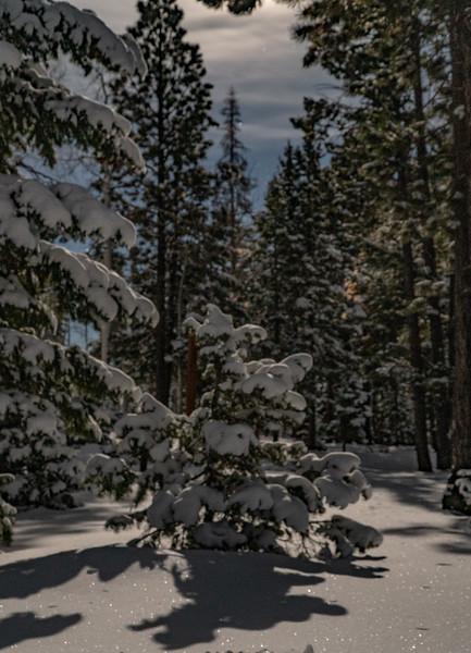 Sundance-42.jpg