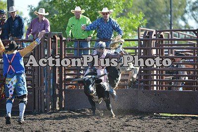 2012 CHSF Jr Bulls