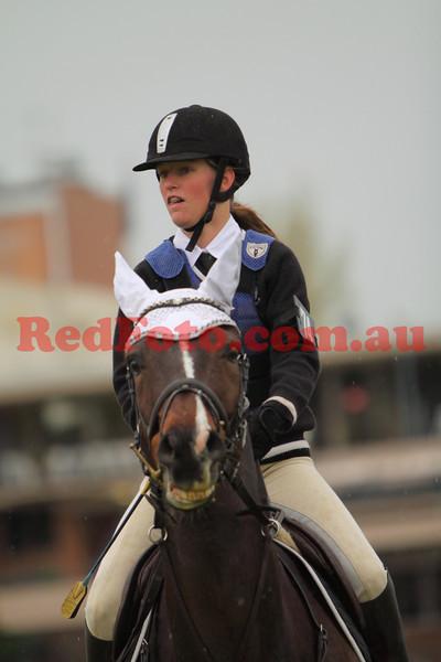 2009 09 29 Perth Royal Show ShowJumping PCAWA Horse AM5