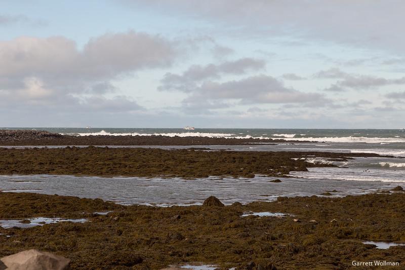 Icelandic coast near Reykjavik-6177.jpg