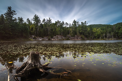 Video: Tour of Ponds on Eagle Mountain Preserve | Conservation Photography