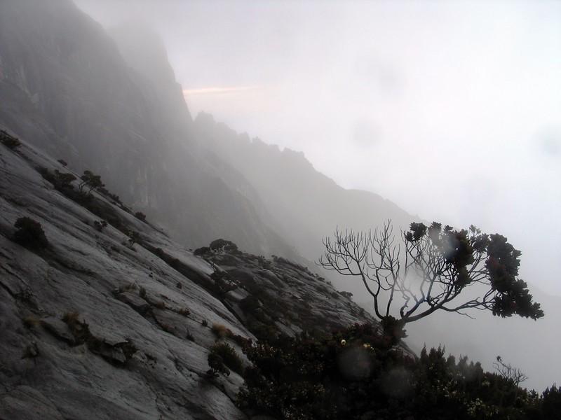 Kinabalu (24).jpg