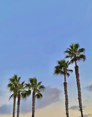 Laguna Love 💕
