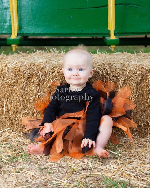 lydia pumpkin patch