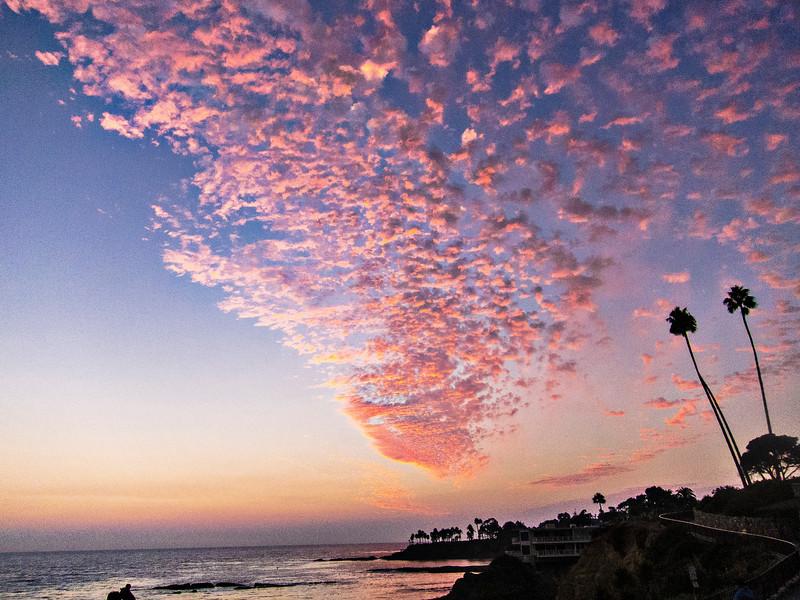 hot pink sky.jpg
