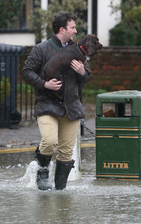 . A man carries a dog through flood water in the High Street on February 12, 2014 in Datchet, England.The Environment Agency continues to issue severe flood warnings for a number of areas on the river Thames in the commuter belt west of London. With heavier rains forecast for the coming week people are preparing for the water levels to rise.  (Photo by Peter Macdiarmid/Getty Images)