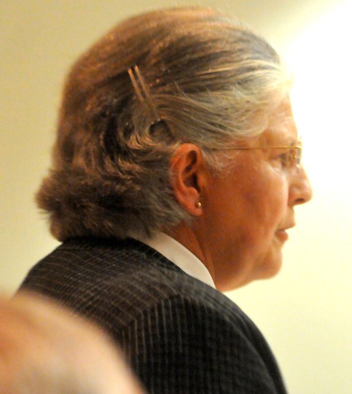 . Aaron Schaffhausen\'s mother, Suzanne Allen, speaks on his behalf before his sentencing. (Pioneer Press: John Doman)