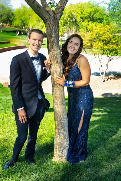 Hannah & James Tree.jpg